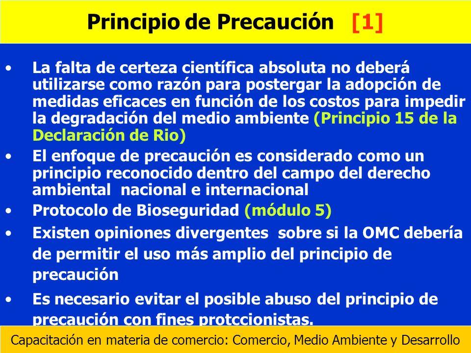 Principio de Precaución [1]